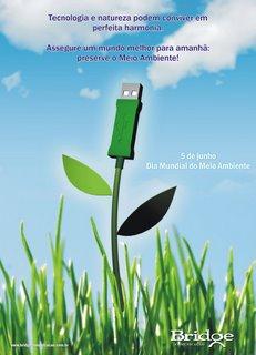 Dia do Meio Ambiente - Campanha da Brideg